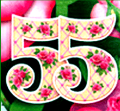 знак 55 лет
